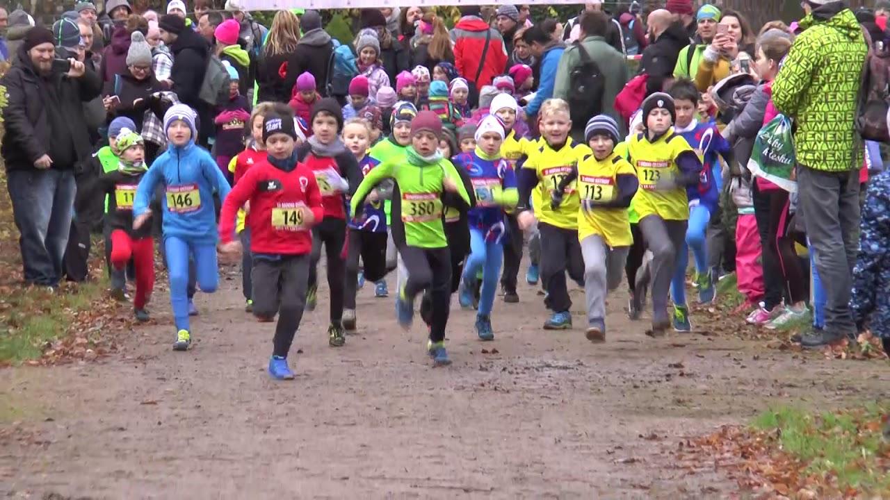 Běh 17. listopadu v zámeckém parku