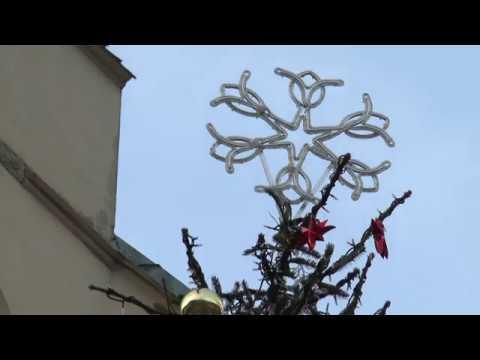 Rozsvěcování vánočních stromů